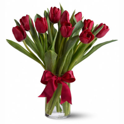 11-красных-тюльпанов