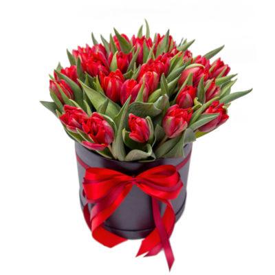 25-тюльпанов-чёрная-коробка
