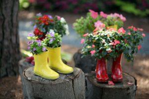 резиновые-сапоги-цветы